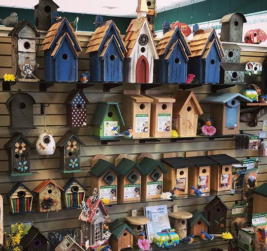 bird house, birdhouse, bluebird house, bird box, nest box