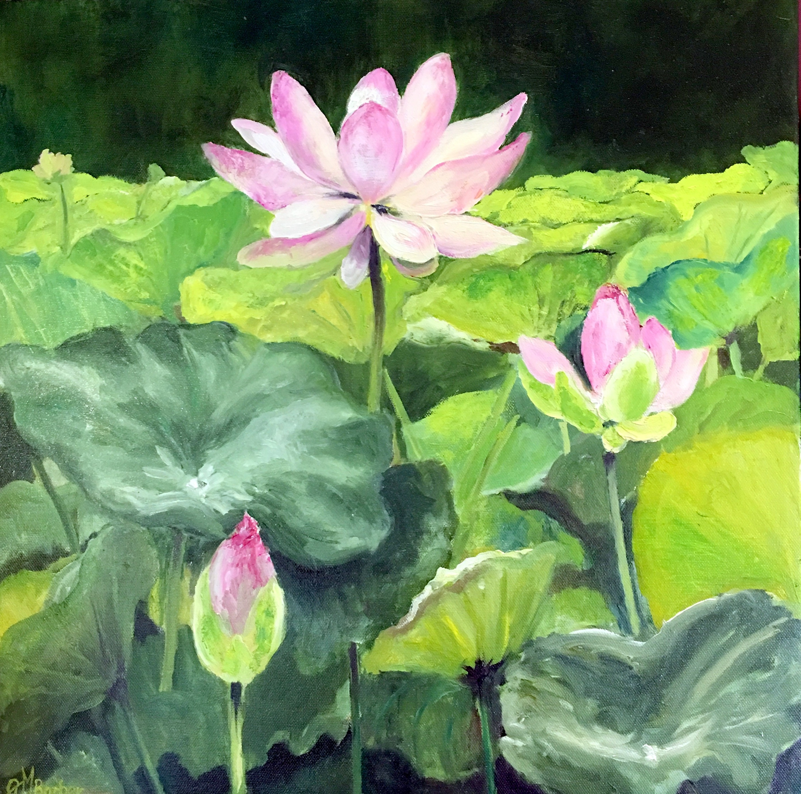 lotus painting_original oil painting_impressionism_ calm beauty_Gayle Barber_Richmond, Virginia artist_ landscapes_ seascapes