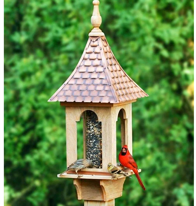 Bird seed, feeders, houses available at Bird Watcher Supply Company