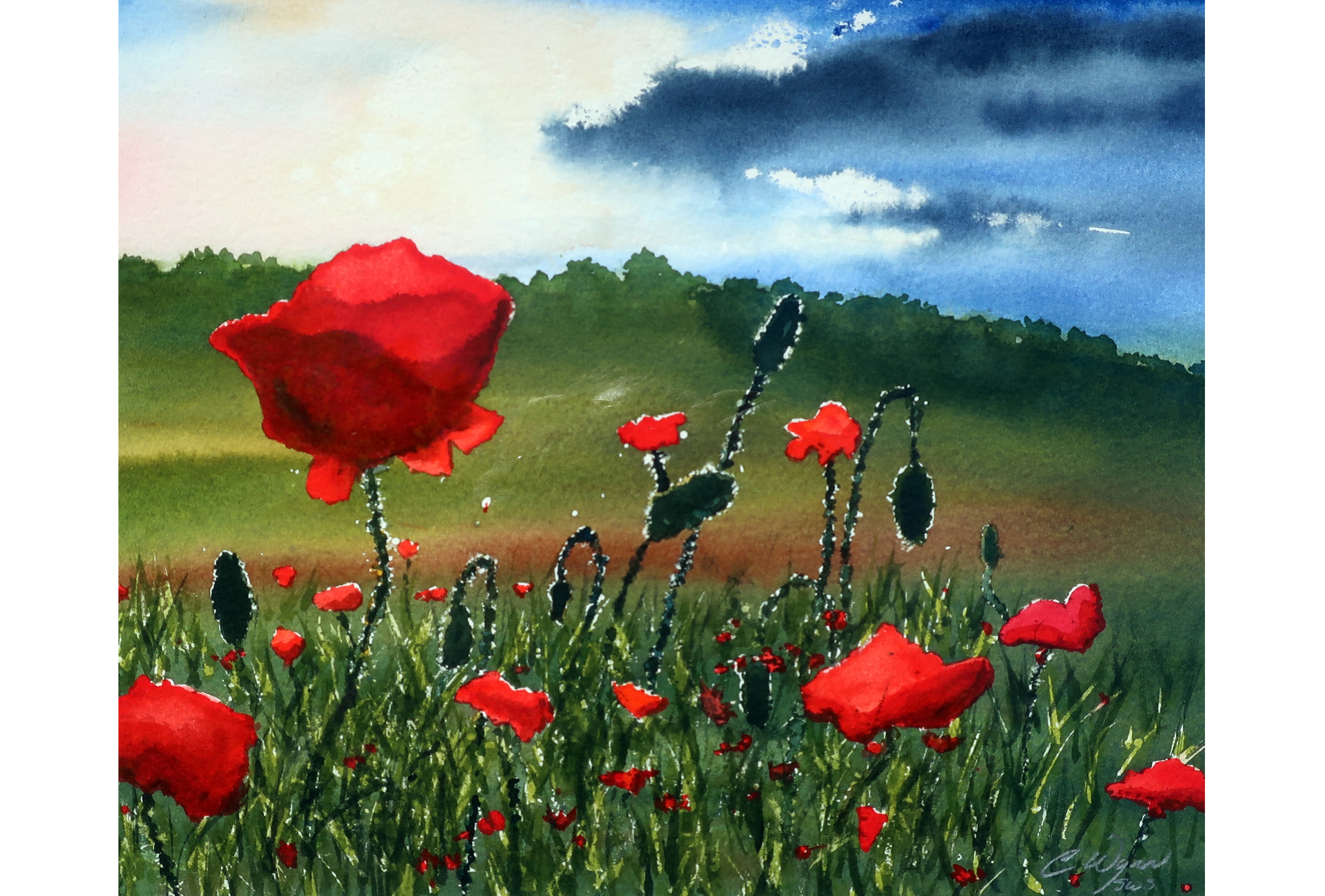 Christopher Wynn_watercolor_Poppies in the Storm_ poppies_ field of poppies