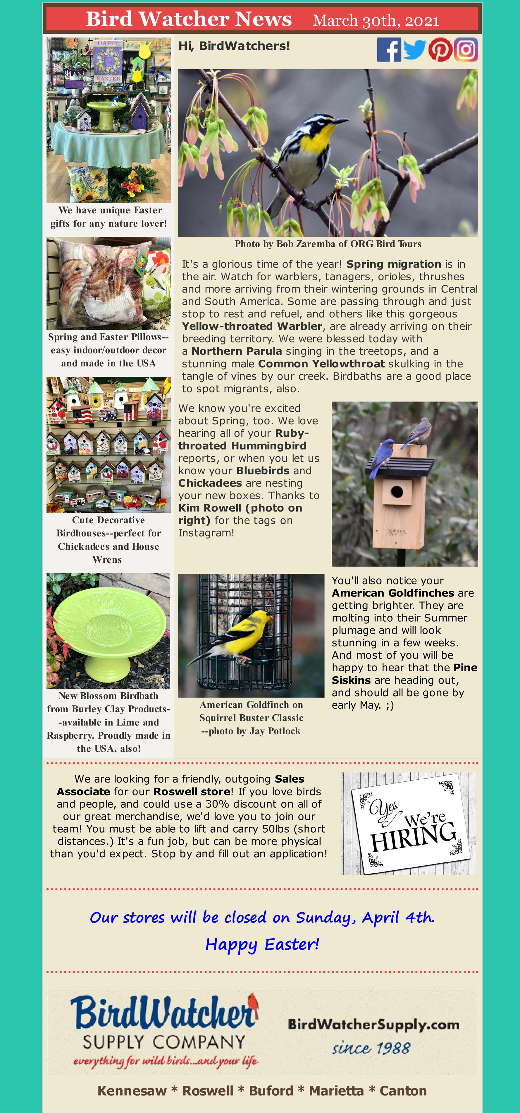 bluebirds, migration, birdbaths, birdhouses, birdfeeders, easter, garden, help wanted