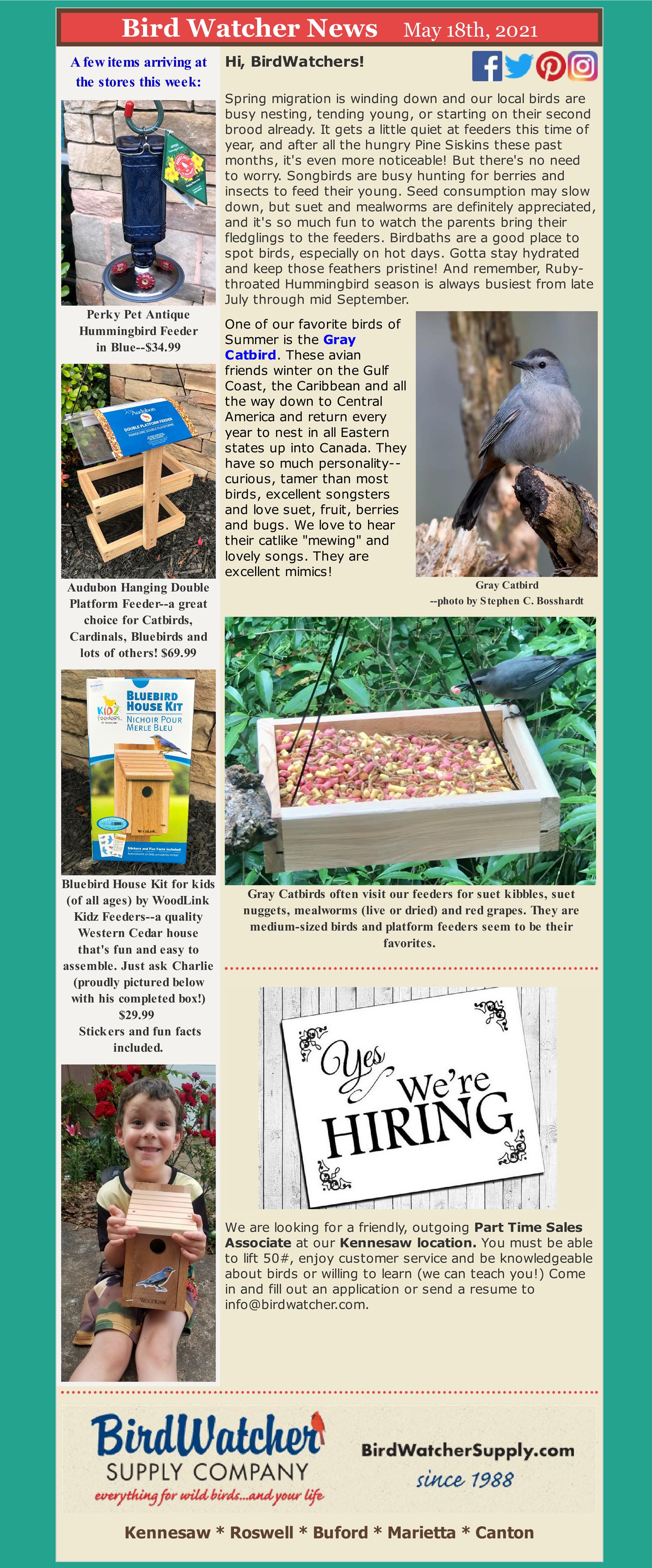 birdfeeders, garden, help wanted, suet, catbirds, mealworms, suet nuggets, suet kibbles, cole's wild bird products, hummers