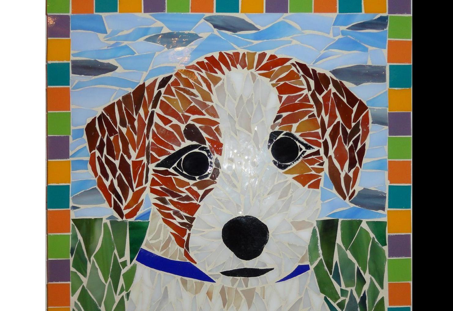 Pet Mosaic class example