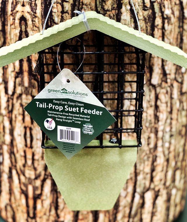 suet, suet feeder, decorative feeder, bird feeding