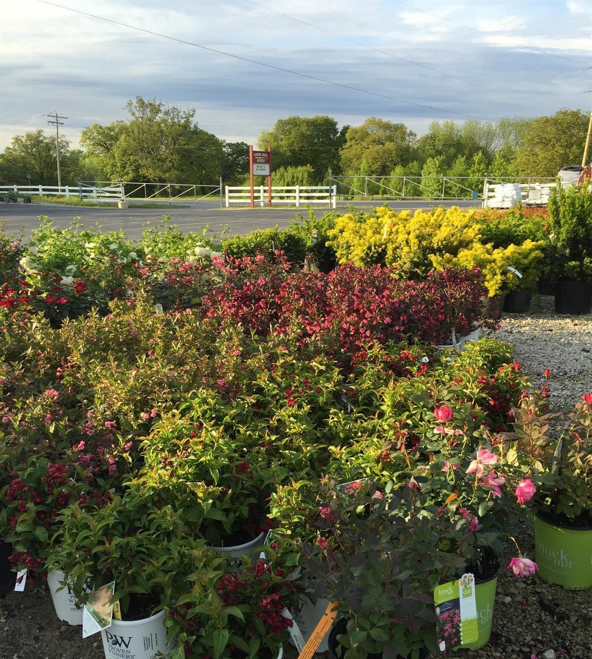 Garden Center & Nursery | Winding Creek Nursery